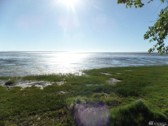 632 Chinook Ave SE, Ocean Shores, WA 98569 (#1149547) :: Ben Kinney Real Estate Team