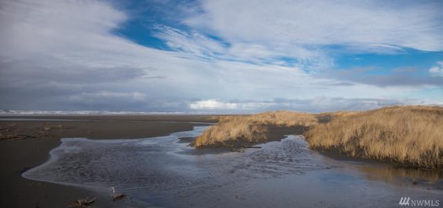 74 Dunes Lane, Ocean Shores, WA 98569 (#1150810) :: Crutcher Dennis - My Puget Sound Homes