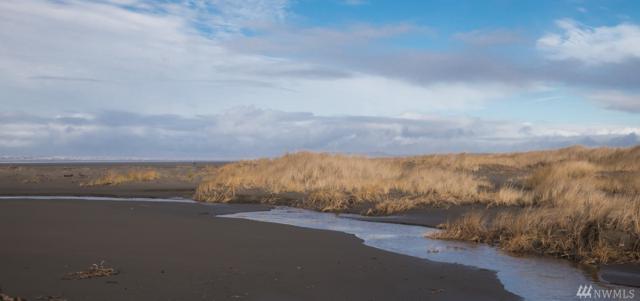 70 Dunes Lane, Ocean City, WA 98569 (#1150816) :: Brandon Nelson Partners