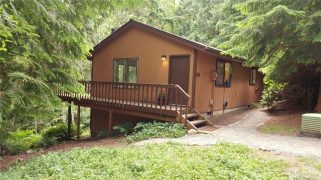 19 Lost Lake Lane, Bellingham, WA 98229 (#1150903) :: Ben Kinney Real Estate Team