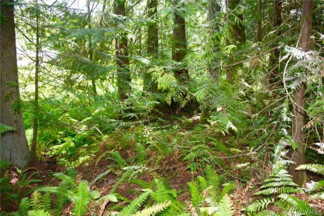 0-XXX Vancouver Dr, Port Townsend, WA 98368 (#1154752) :: Ben Kinney Real Estate Team
