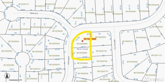 55515-55517 315th Ave E, Ashford, WA 98304 (#1156704) :: Ben Kinney Real Estate Team