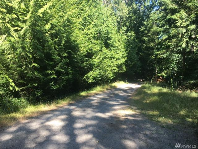 25 Whitney Rd, Quilcene, WA 98376 (#1160886) :: Alchemy Real Estate