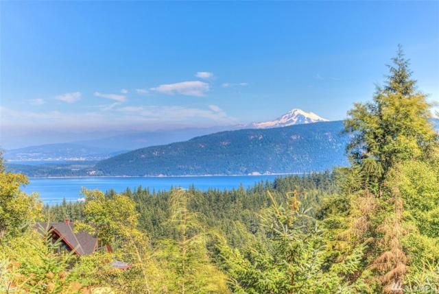 961 Eagle Lake Lane, Orcas Island, WA 98245 (#1162010) :: Real Estate Solutions Group