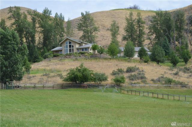 248 Twisp River Rd, Twisp, WA 98856 (#1165563) :: Ben Kinney Real Estate Team