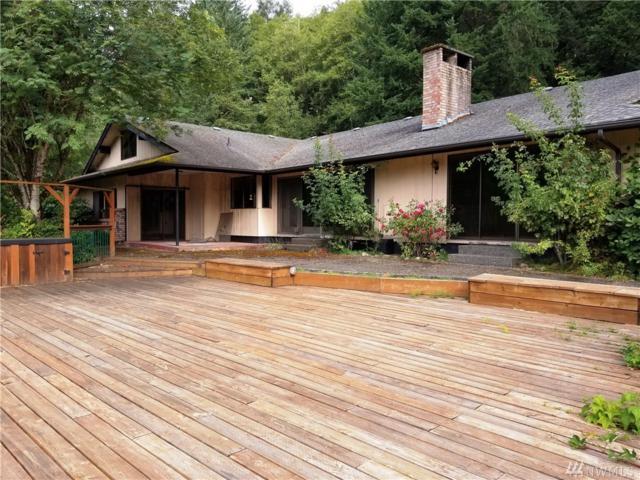 163 Wills Rd, Glenoma, WA 98336 (#1166484) :: Ben Kinney Real Estate Team