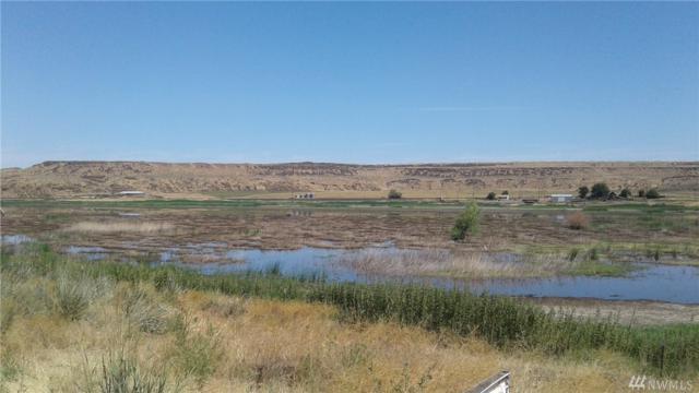 0-NNA Road 22 NE, Wilson Creek, WA 98860 (#1172357) :: Ben Kinney Real Estate Team