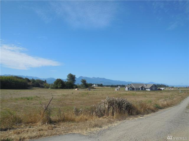 99999 Honeysuckle Lane, Sequim, WA 98382 (#1174622) :: Ben Kinney Real Estate Team
