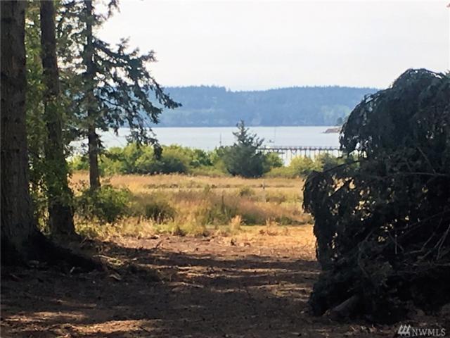 4-xxx Centerview Dr, Decatur Island, WA 98221 (#1176737) :: Ben Kinney Real Estate Team