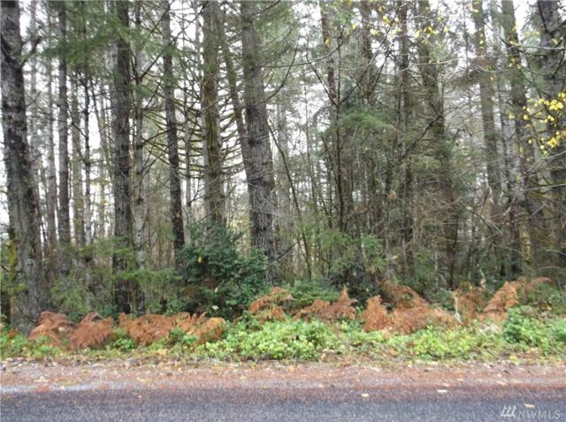 60-lot Tahuya River Rd, Tahuya, WA 98588 (#1178306) :: Homes on the Sound