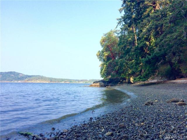 814 Olga Rd, Orcas Island, WA 98245 (#1181711) :: Ben Kinney Real Estate Team