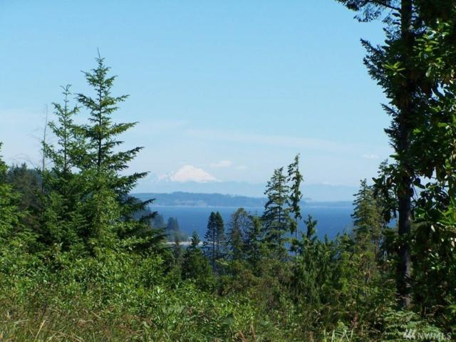 0-lot 18 E Go Onna Rd, Quilcene, WA 98376 (#1182027) :: Ben Kinney Real Estate Team