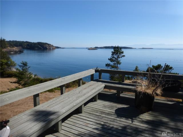 271 Skid Rd, Lopez Island, WA 98261 (#1182664) :: Ben Kinney Real Estate Team