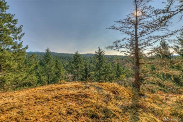 224 Salish Wy, Orcas Island, WA 98279 (#1187078) :: Ben Kinney Real Estate Team