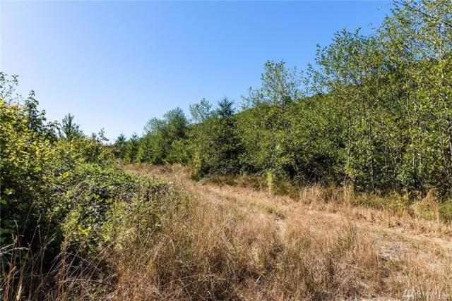 303 Westshore Rd, Castle Rock, WA 98611 (#1190357) :: Ben Kinney Real Estate Team