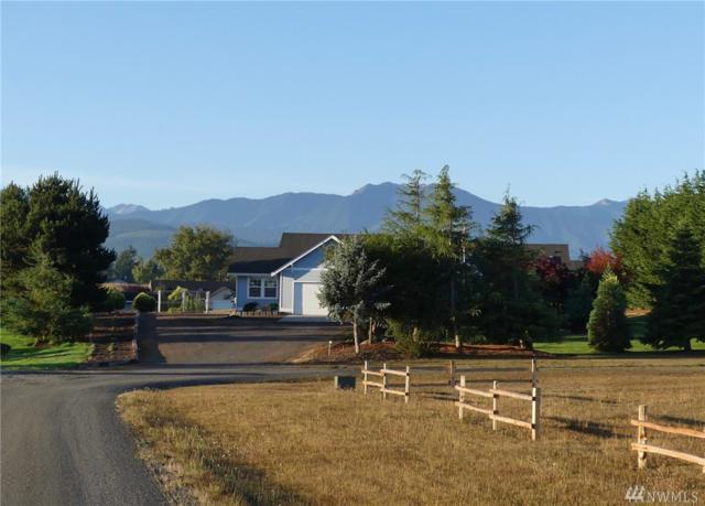 206 Buckhorn Road, Sequim, WA 98382 (#1191665) :: Ben Kinney Real Estate Team