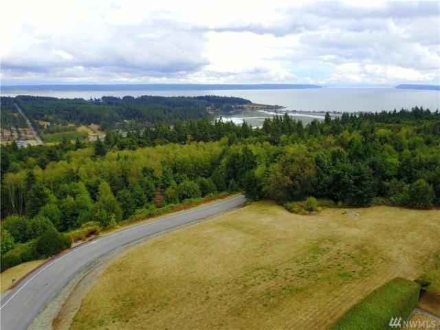 0 Glacier Peak Rd, Camano Island, WA 98282 (#1195609) :: The Home Experience Group Powered by Keller Williams