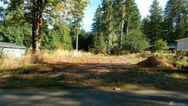 0 Satko Glen Dr, Elma, WA 98541 (#1196722) :: Homes on the Sound