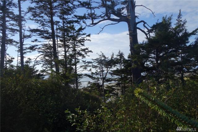 17 W Chauncey Lane, Pacific Beach, WA 98571 (#1199767) :: Ben Kinney Real Estate Team