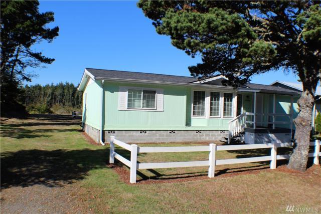 23007 V St, Ocean Park, WA 98640 (#1200987) :: Ben Kinney Real Estate Team