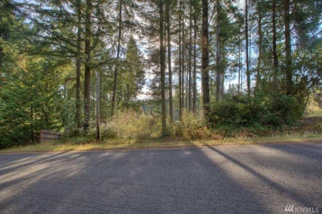 0 24th St KP, Lakebay, WA 98349 (#1202783) :: Ben Kinney Real Estate Team