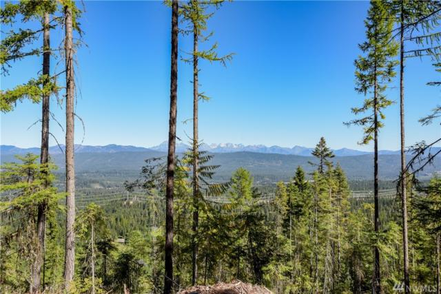 911-(Lot 41) Trailside Dr, Cle Elum, WA 98922 (#1205116) :: Homes on the Sound