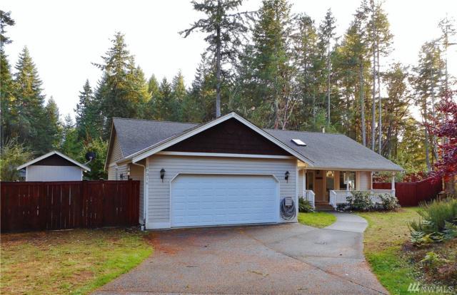 10316 107th Av Ct, Anderson Island, WA 98303 (#1205814) :: Ben Kinney Real Estate Team