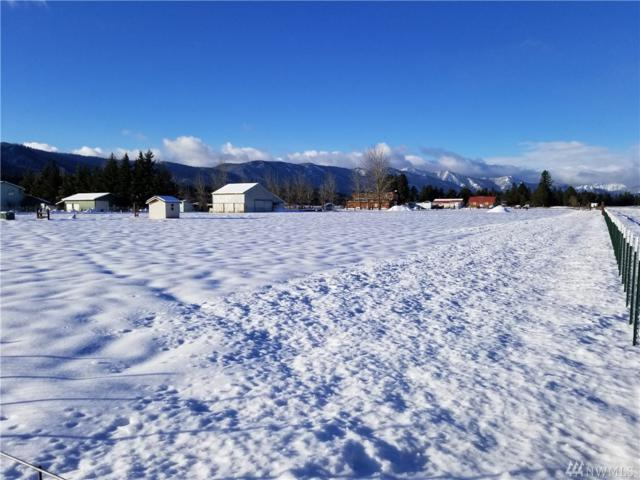 491 Pease Rd, Cle Elum, WA 98922 (#1205850) :: Tribeca NW Real Estate