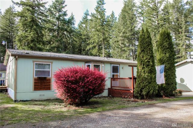 10032 168th Ave SW, Rochester, WA 98579 (#1206284) :: Ben Kinney Real Estate Team