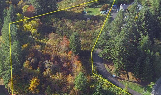 1319 Maple Valley Dr, Centralia, WA 98531 (#1207249) :: Ben Kinney Real Estate Team