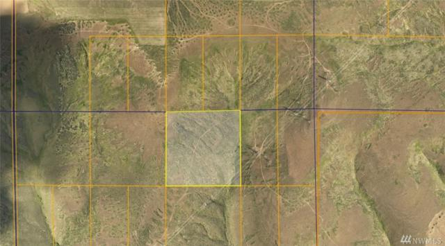 0 40 Acres Undeveloped Land, Coulee City, WA 99115 (#1209021) :: Hauer Home Team