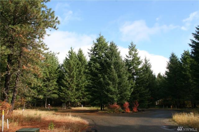 111 Jumbo Mine Lane, Cle Elum, WA 98922 (#1210228) :: The Home Experience Group Powered by Keller Williams