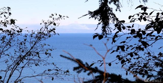 9999 Shimko Rd, Port Angeles, WA 98363 (#1210877) :: Homes on the Sound