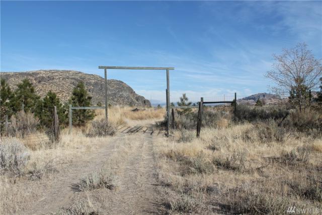 1-F S Highway 7, Tonasket, WA 98855 (#1213156) :: Ben Kinney Real Estate Team
