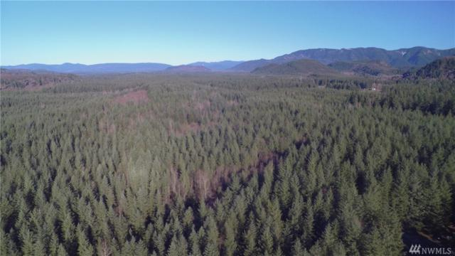 361-XX SE 361st Place Lot U, Enumclaw, WA 98022 (#1219924) :: Icon Real Estate Group