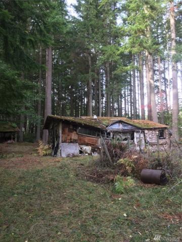 692 Classic Rd, Greenbank, WA 98253 (#1220679) :: Homes on the Sound