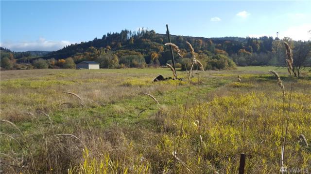 535 Garrard Creek Rd, Oakville, WA 98568 (#1226047) :: Homes on the Sound