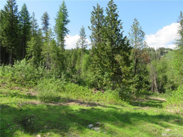 0-Lot 35 4th Of July Cr. Rd, Danville, WA 99121 (#1229529) :: Real Estate Solutions Group