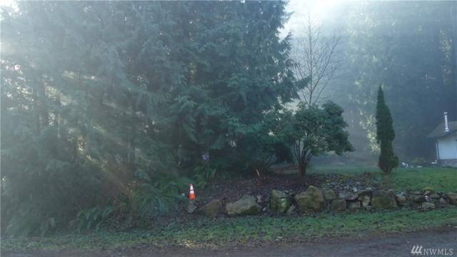 0 W. Peak Dr, Sedro Woolley, WA 98284 (#1229611) :: Homes on the Sound