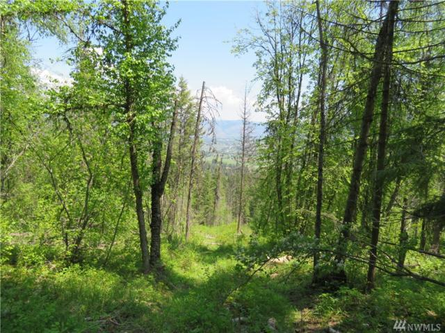0-lOT 26 4th Of July Cr. Rd, Danville, WA 99121 (#1230407) :: Real Estate Solutions Group