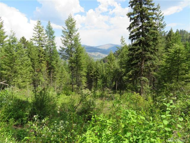 0-Lot 23 4th Of July Cr. Rd, Danville, WA 99121 (#1230736) :: Real Estate Solutions Group