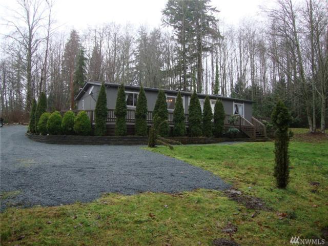 19976 Double Creek Lane, Sedro Woolley, WA 98284 (#1232842) :: Brandon Nelson Partners