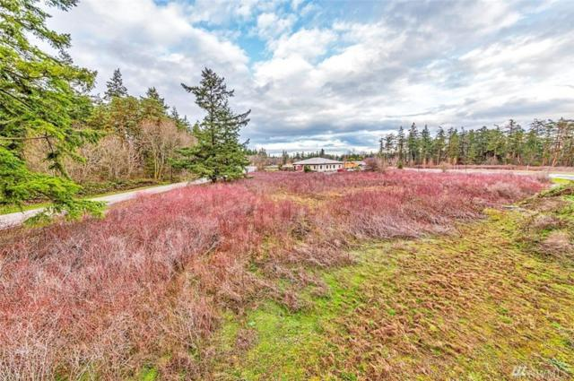 0 Discovery Rd, Port Townsend, WA 98368 (#1240946) :: Tribeca NW Real Estate