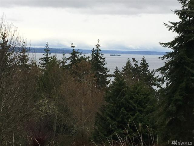 7-Lot Skywater Dr, Port Hadlock, WA 98339 (#1241434) :: Homes on the Sound