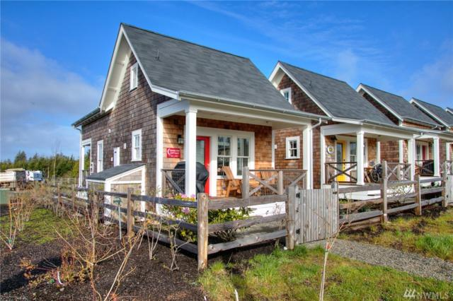 10 Grove Lane, Pacific Beach, WA 98571 (#1243377) :: Better Homes and Gardens Real Estate McKenzie Group