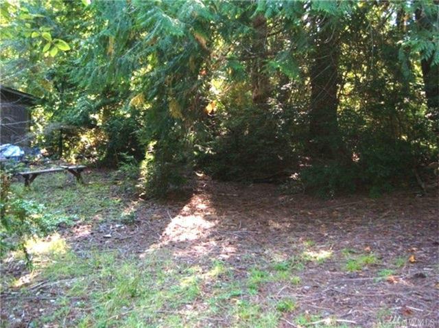 761 E Promontory Rd, Shelton, WA 98584 (#1245931) :: Crutcher Dennis - My Puget Sound Homes