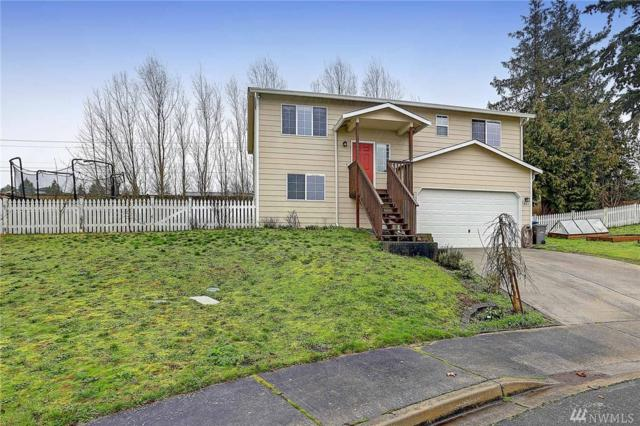 7805 260th St NW, Stanwood, WA 98292 (#1246560) :: Real Estate Solutions Group