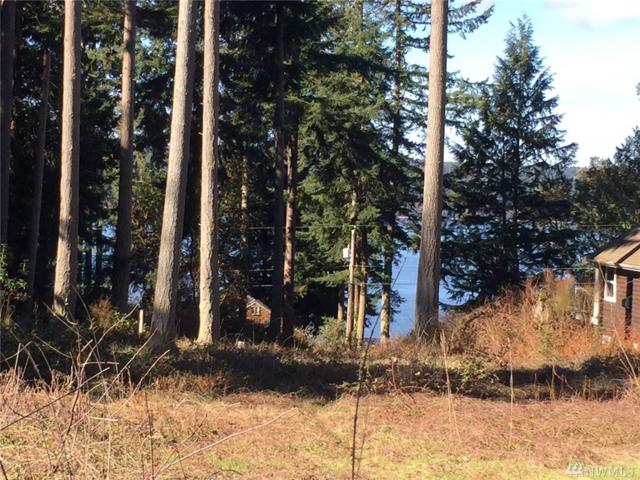 4013 Beach Dr, Freeland, WA 98249 (#1248308) :: Real Estate Solutions Group