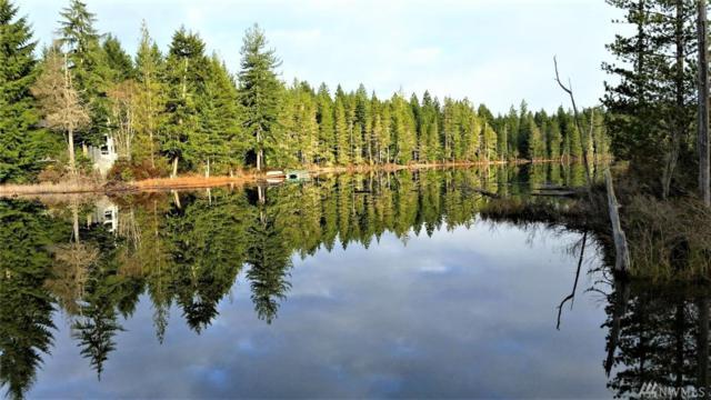 80 NE Lakeway Dr, Belfair, WA 98528 (#1251047) :: The Vija Group - Keller Williams Realty