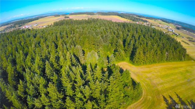 0-xxx Monroe Landing Rd, Oak Harbor, WA 98277 (#1251137) :: Real Estate Solutions Group
